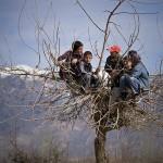 Прикольные Дети Таджикистана