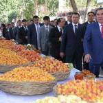 Экономика Таджикистана