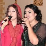 Pevica Habiba