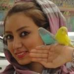devushki_iran_pers_70