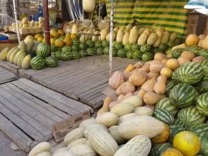 Photo: Melon and Watermelon