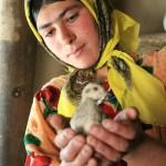 yagnob_tajikistan_gori-03
