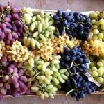 Виноград Таджикистана