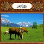 Аль Бакара — сура о Корове, слушать, скачать