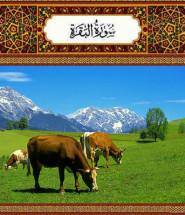 surai_baqara_