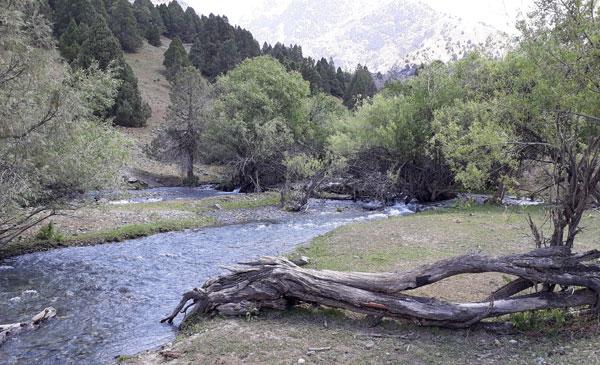 Река каратаг