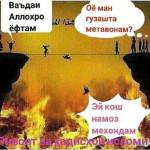 ПУЛИ СИРОТ