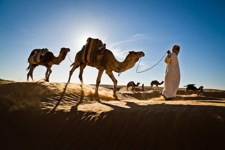 Уштур араб дар Сафар
