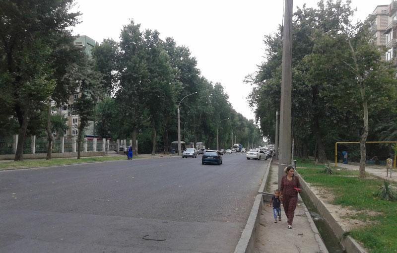 Улица Маяковского городе Душанбе