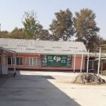 Musical schools in Dushanbe