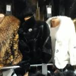 Меховые женское пальто сколько стоит?