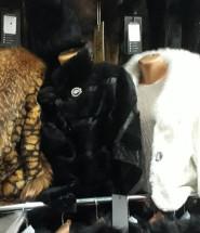 Меховые новые пальто мини