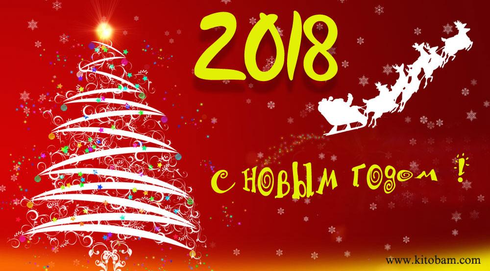 noviy-god-2018-29