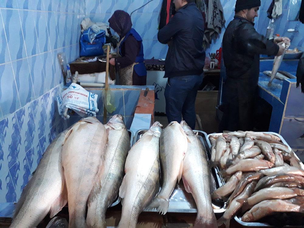 Рыба в рынке саховат Душанбе