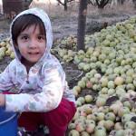 Законодательство Таджикистан об охране окружающей среды