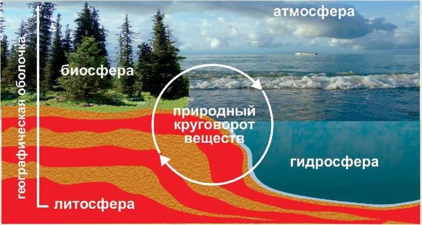 . Взаимосвязи в географической оболочке