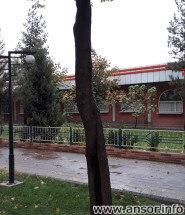 мясной бульвар Душанбе