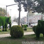 Слон и медведь в Душанбе