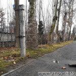Ошхонаи Ҳоҷи Афзалшо дар ш. Душанбе