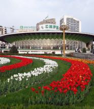 тюльпаны города Душанбе цирк