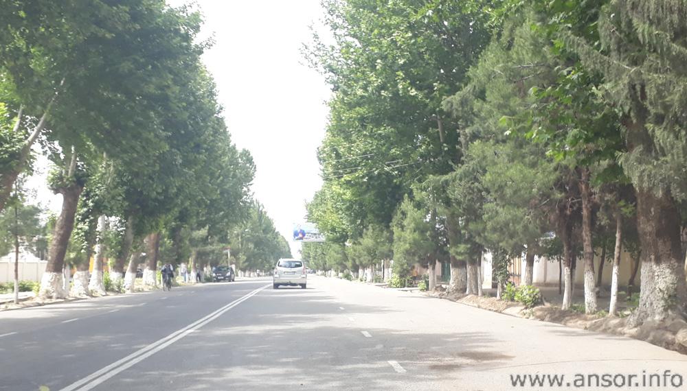 Кӯчаи асосии шаҳри Қубодиён