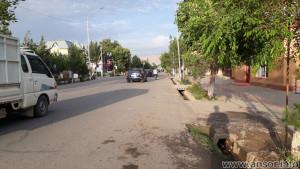 Центральная улица городка Шахритуз